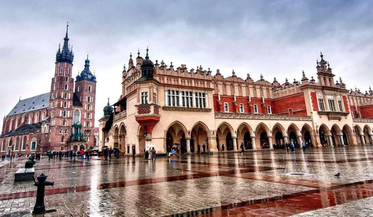 Wild Bieszczady in Poland - RNR-Vilmorin